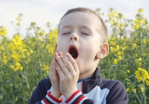 6 yars old boy with tissue on the field of flowers
